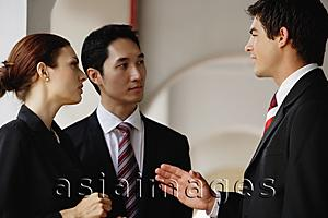 Asia Images Group - Businessmen and businesswoman having a discussion