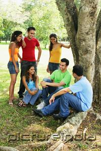 PictureIndia - Young adults, sitting and standing in park, talking