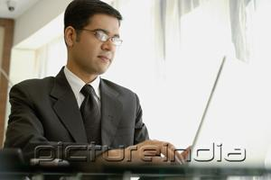 PictureIndia - Businessman using laptop